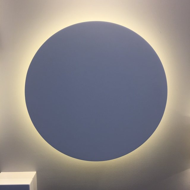 Circular LED wall wash light